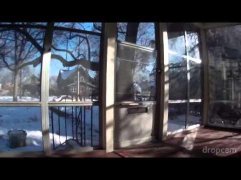 Cat Breaks through Glass Window