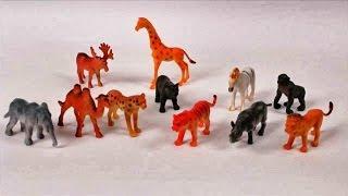 Сюрприз яйца и животные из зоопарка - дети дошкольного возраста - дети - учиться - образование