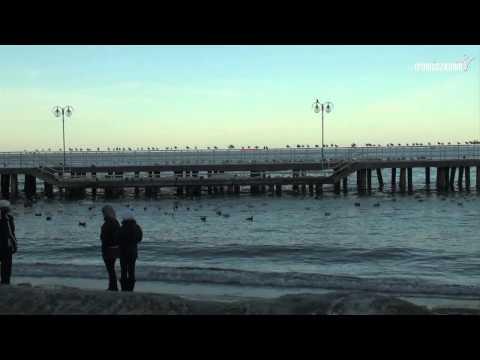 Franciszkańskim okiem 16 - Ostatni dzień stycznia w Gdyni