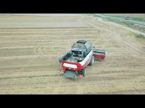 Уборка урожая в Московской области.