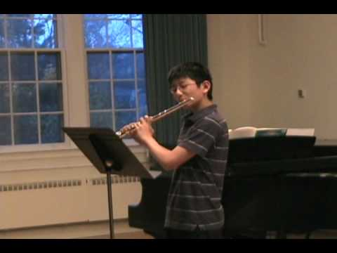 The Swan by Camille Saint Saens-- flute