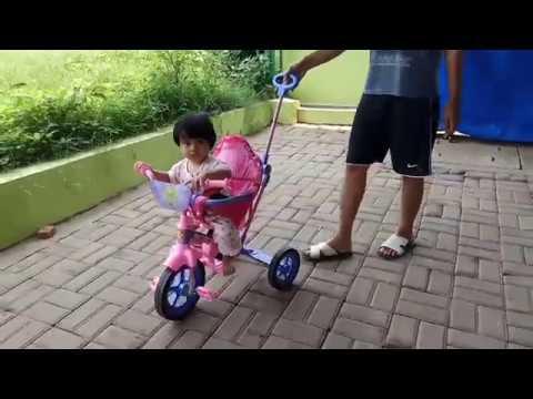 Riview Sepeda Roda Tiga Family