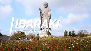 Exploring Ibaraki Perfecture