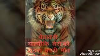 valmiki-sarkar-song-royal-valmiki-of-story