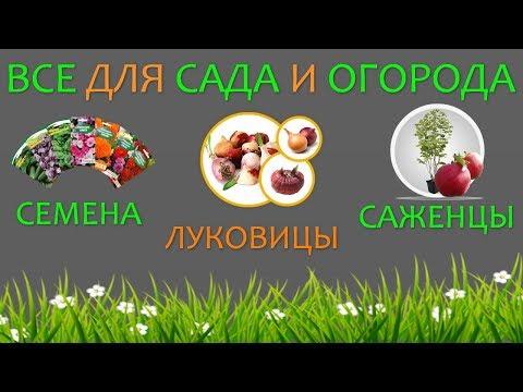 Приобрести все для сада и огорода в Украине. Семена, луковицы и саженцы