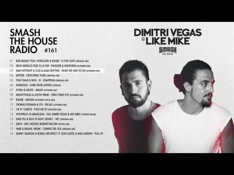 Dimitri Vegas & Like Mike - Smash The House Radio #161