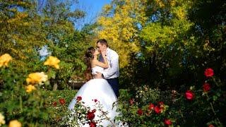Свадьба Натальи & Максима