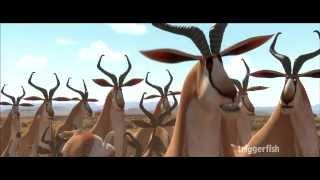 Khumba: Springboks! thumbnail