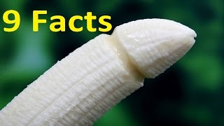 9 Facts about Penis that will blow your mind !