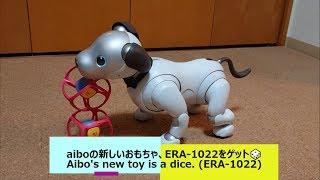 aiboの新しいおもちゃ、ERA-1022をゲット🎲 - Aibo