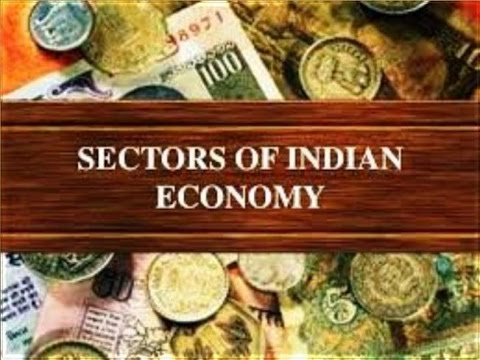CBSE Class 10th - Economics - Sectors of Indian Economy (Hindi)