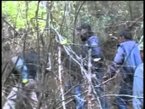 PKK lı Teröristlerin Yakalanma Anını
