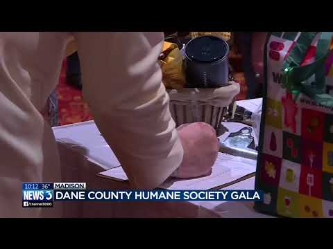 Animal Lovers Gather At Dane County Humane Society Gala