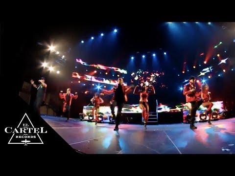 DADDY YANKEE SHOW ATLANTA (Live)