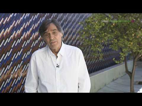 Agustín Díaz Yanes, director de cine y guionista. Sevilla
