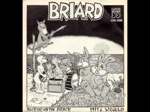 Briard - Miss World