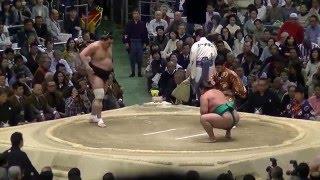 今場所、ようやく嘉風らしい相撲。