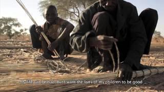 Story of Salissou: Eating locust as food