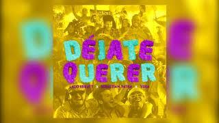 Lalo Ebratt, Sebastian Yatra, Yera - Déjate Querer Ft. Trapical Minds Acapella Instrumental Edits
