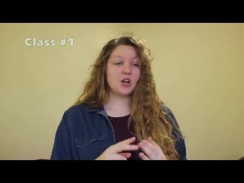 What is the class structure like at University of Leicester?
