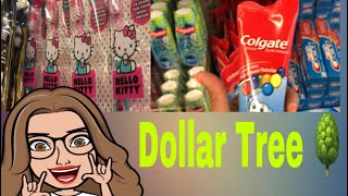 Que venden las tiendas de DÓLAR en USA? Dollar Tree 🌳 TOUR
