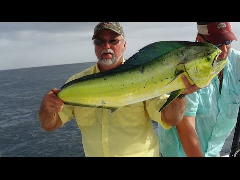 Destin Fishing Trip July 4th 2015