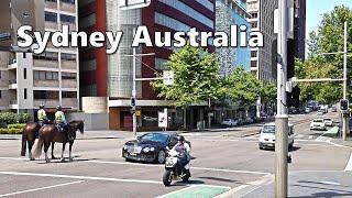 Walking to AUSTRALIAN MUSEUM from Kings Cross via William Street | Australia Sydney Walking Tour