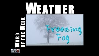 What is freezing fog? | Weather Word of the Week