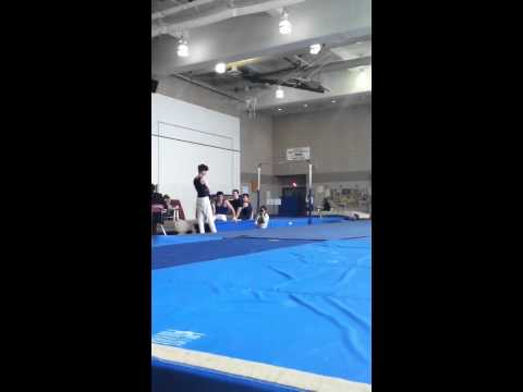 Dewitt Clinton High School Gymnastics