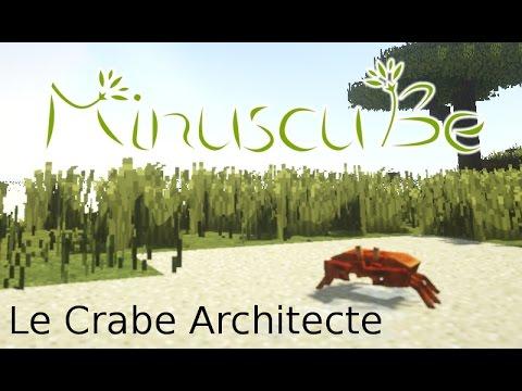 "MinuscuBe : ""Le Crabe Architecte"""