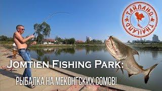Thailand Jomtien Fishing Park Рыбалка на сомов 2019