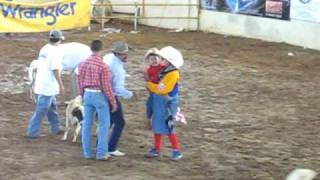CAMPEON DE RODEO INFANTIL