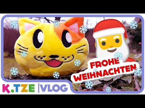 frohe-weihnachten-überall-🐱