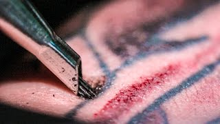 TATTOOING Close Up (in Slow Motion) - Smarter Every Day 122(Free Audio Book ⇒ http://bit.ly/AudibleSED Tweet⇒http://bit.ly/SEDTattoo FB⇒http://bit.ly/SEDTattooFB More info! ⇊ Click below for more links!, 2014-09-24T14:18:59.000Z)