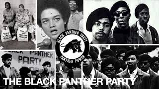 Why BLM: The Black Panther Party