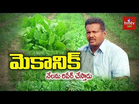 Natural Farming | Mechanic Turns To Successful Farmer | hmtv Agri