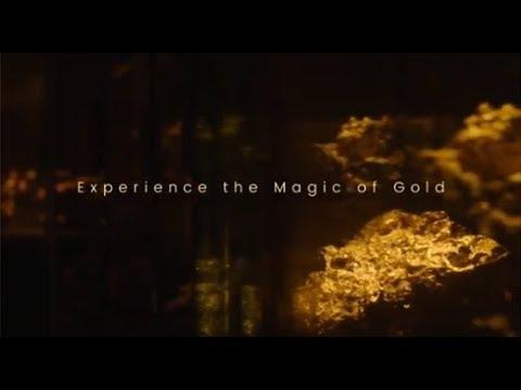 Go West Gold Mine Experience   Go West Tours