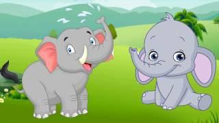 Con vật và tiếng kêu | bé học đọc tập nói qua hình ảnh các loài động vật | Dạy trẻ thông minh sớm
