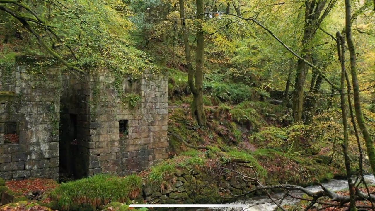 Exploring Abandoned Gunpowder Factory Ruins in Autumn 2020 - Kennall Vale Cornwall