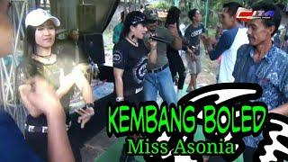 Download lagu KEMBANG BOLED // MISS NIA ASONIA // KOMPUDER MUSIC