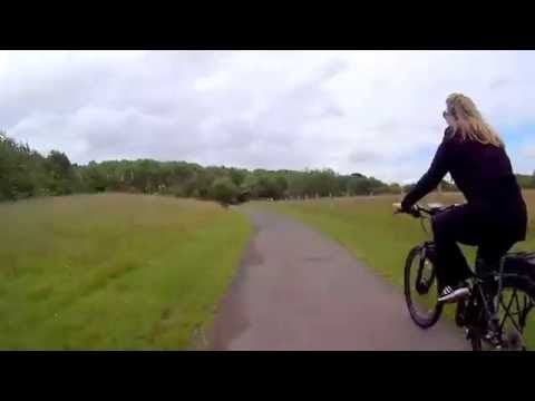 Suitable bike for conversion | Pedelecs - Electric Bike