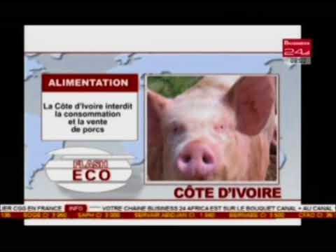 Business 24 / Flash - Alimentation : La Cote d'Ivoire interdit la consommation et la vente de porcs