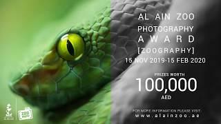 Al Ain Zoo Photography Award | Zoography 2019