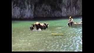 Cuba - Baracoa- Boca del Yumuri