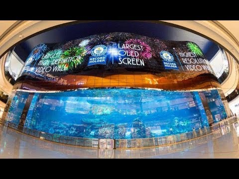 Interesting Dubai Mall feature - Guinness Record