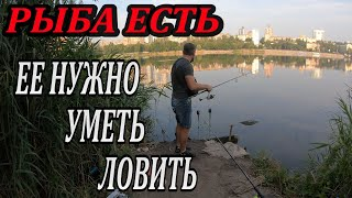 Рыбалка На Реке в Центре Города Ловлю на Пружины с Гороховой Прикормкой