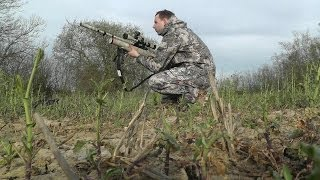 Air Rifle Hunting With My Daystate Airwolf