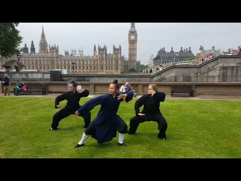 Wudang Tai Chi 36-step with Yuan Li Min in London - first part