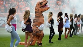 Broncos cheerleader dresses up like a dinosaur Performed  NFL Dance Routine halloween costumes 2016
