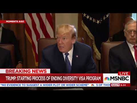 Trump: I'm Ending Diversity Lottery Program and Chain Migration